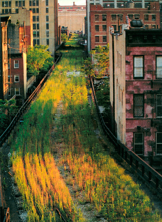 High Line article photo