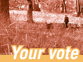 NYLCV Election Ads and Postcards
